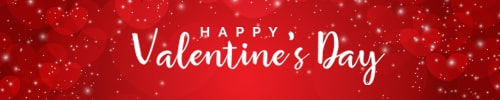 Valentine's email signature banner