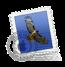 Mac Mail Signatures